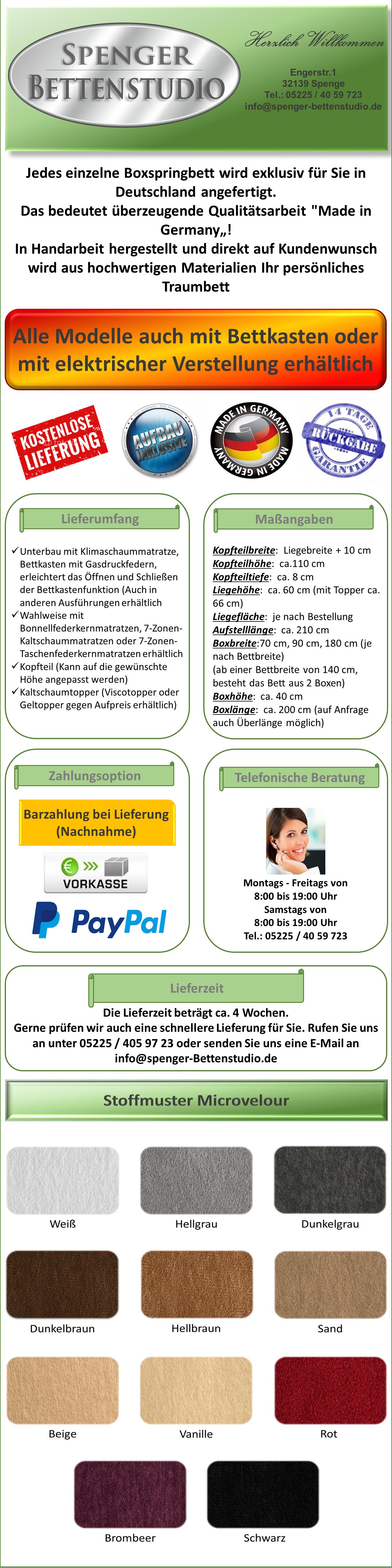 Groß Vorlage Prüfen Zeitgenössisch - Beispiel Business Lebenslauf ...